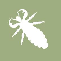 termite bc2e